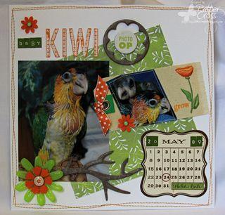 Baby-KiwiA
