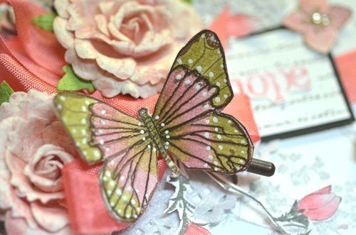 Closebutterfly