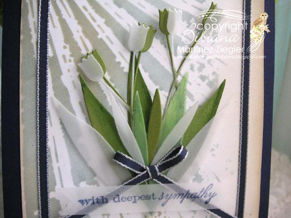 Sympathy tulip detail