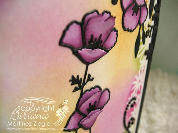 Poppies vibrant flowers