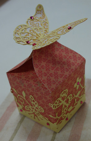 ButterflyBox1