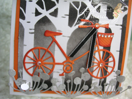 Halloween bicycle detail