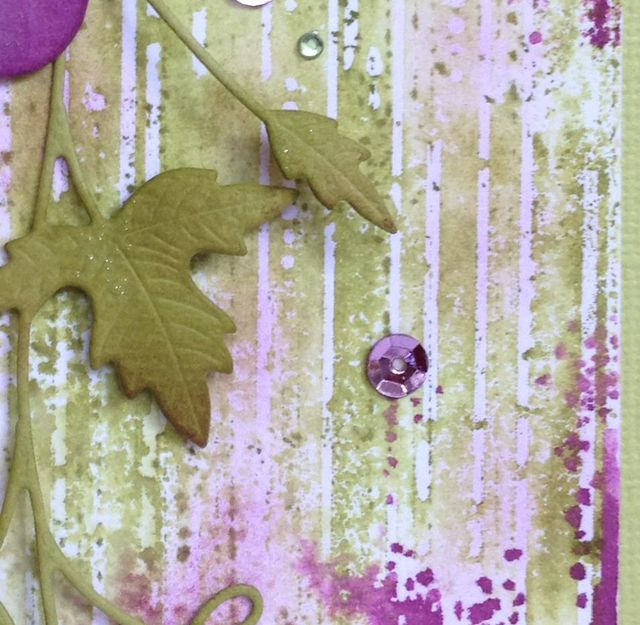 Ivy and Grapes - 4