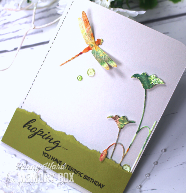 Dragonfly-hb3