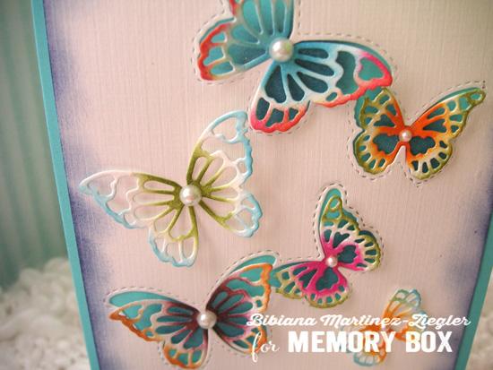 Butterflies color detail
