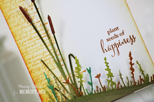 Cattail-Happiness-1