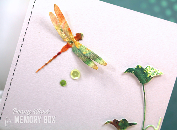 Dragonfly-hb2