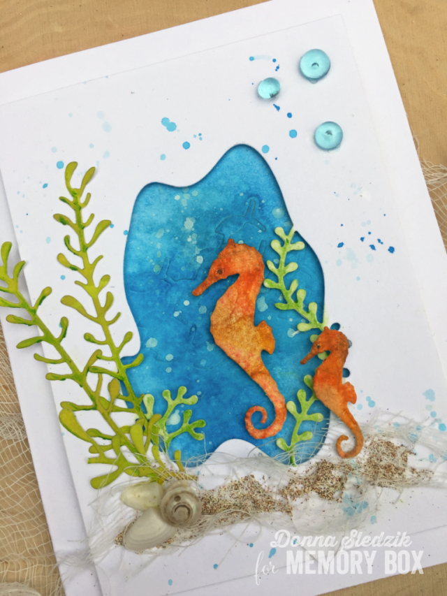 Swimming Seahorses
