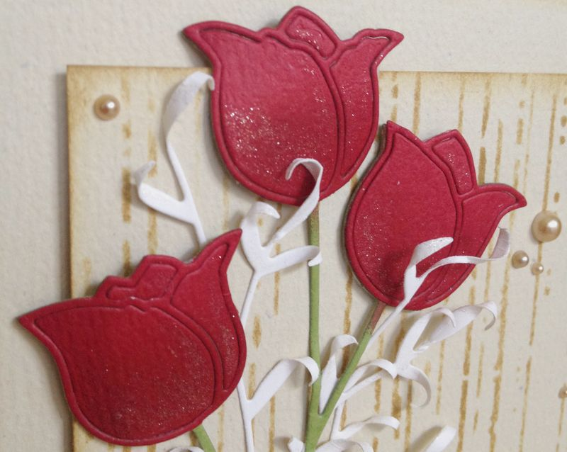 Red Tulips - 2