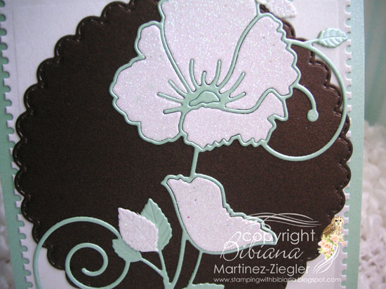 White poppy detail