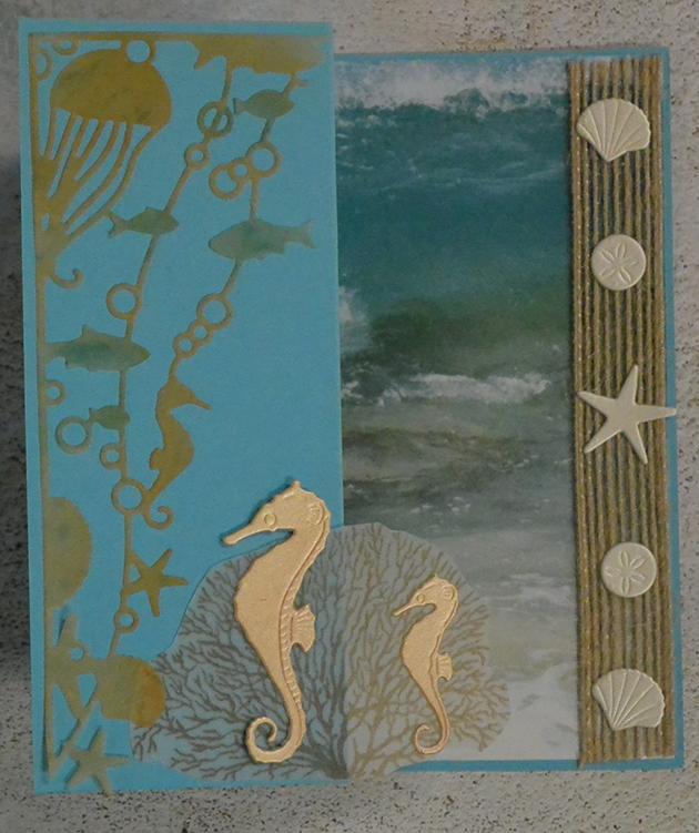 Sea Horse 1