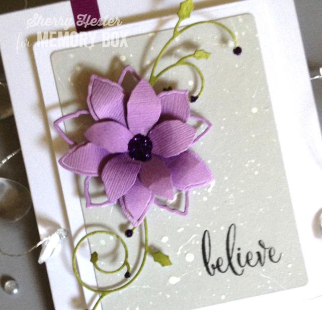 Believe-3