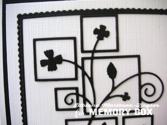 PPS frames black and white detail
