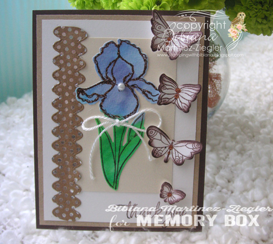 Iris in blue front