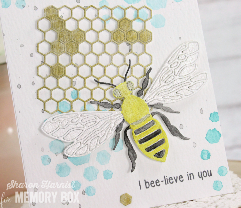 5-4 Bee-lievCU-SH