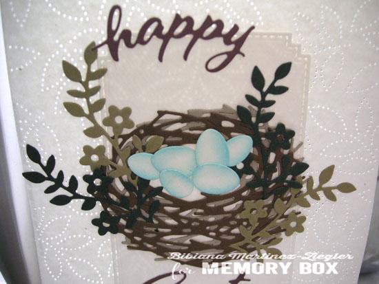 Nest detail eggs