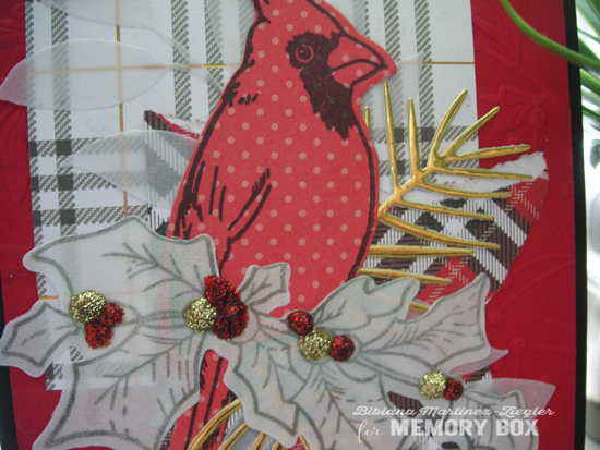 Cardinal papers detail