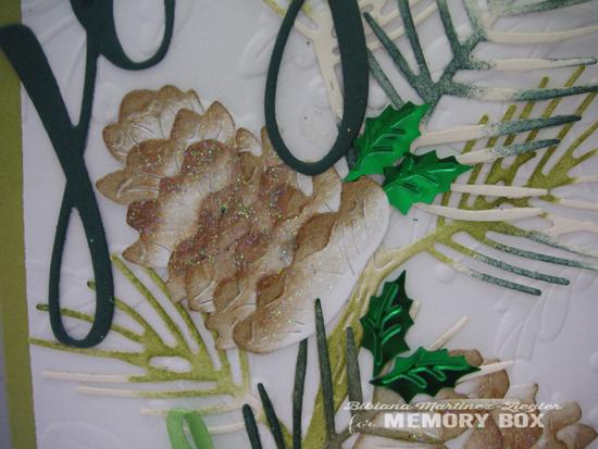 Pine cones detail