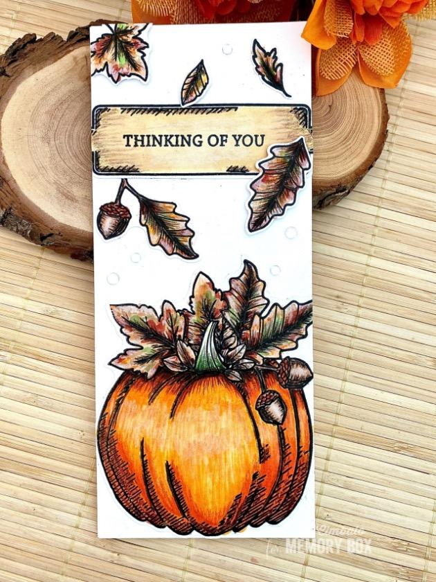 CL5264-D Halloween Pumpkin clear stamp and die set