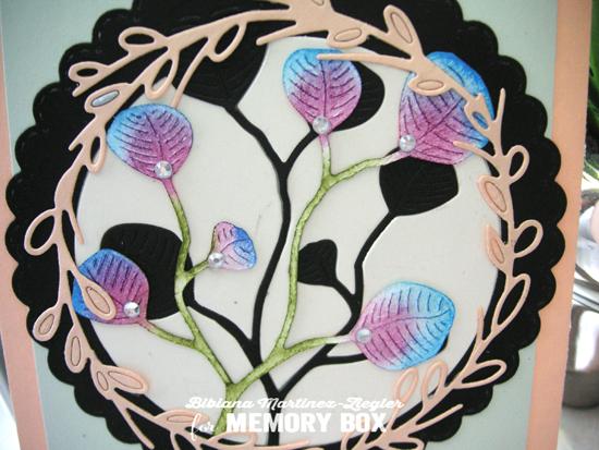 Colorful eucaliptus detail