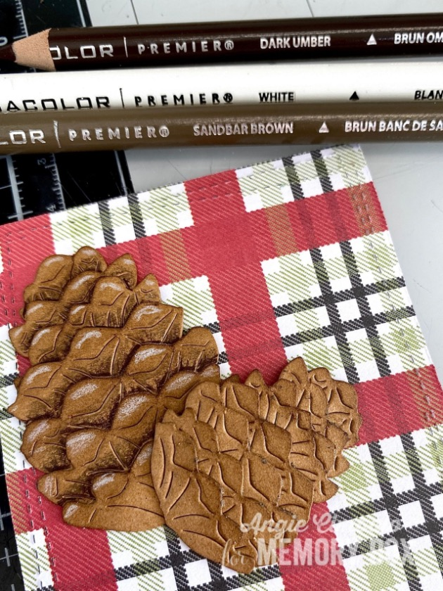 Pinecones w and wo pencil
