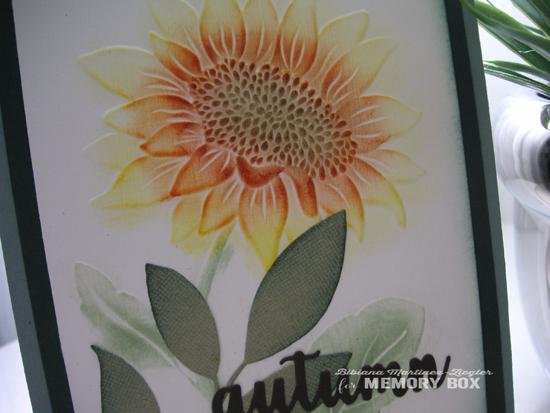 Fall sunflower detail