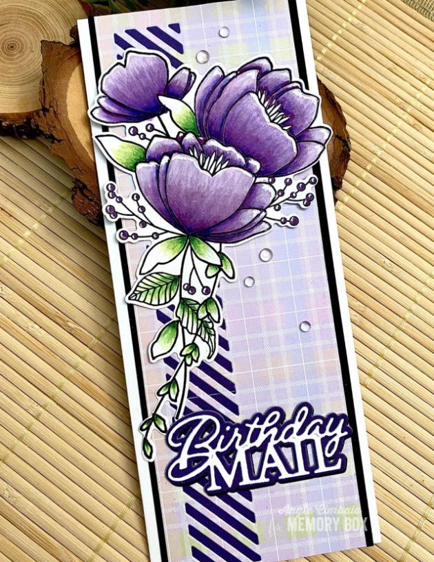SP1008 Twilight Purple 6x6 pack
