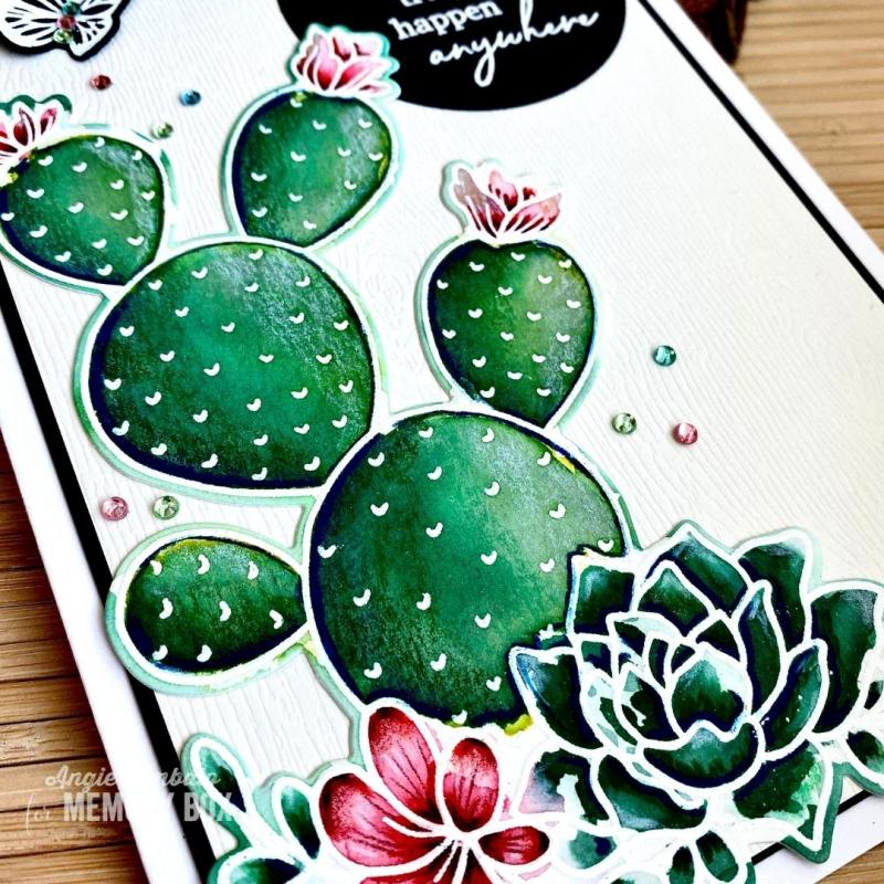 Cactus WM 5