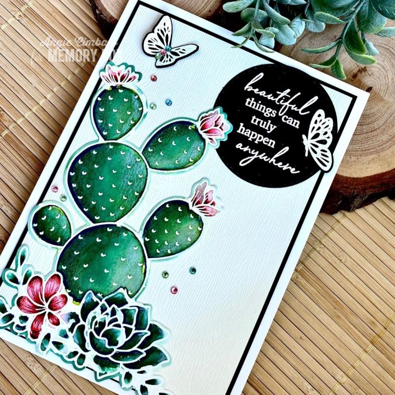 Cactus WM 3