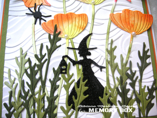 Poppies witch detail
