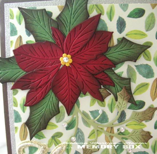 Xmas red poinsettia flower